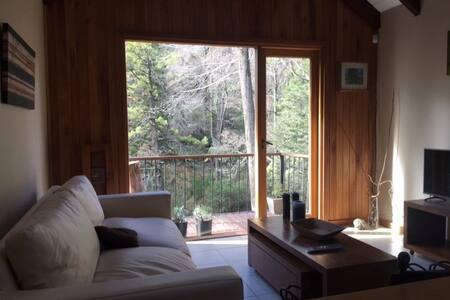 Hermosa Cabaña S. M. de los Andes - Cabaña