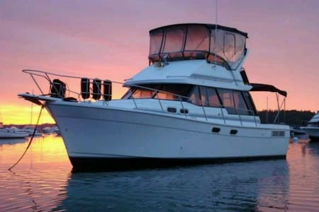 Paradise island beautiful boat 32ft - Paradise Island - Boat