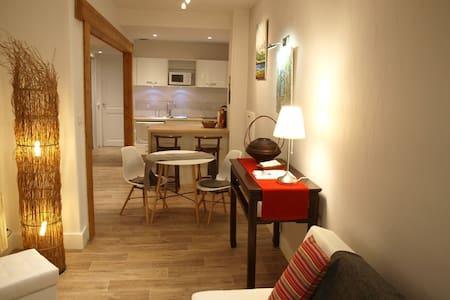Spacieux appartement de 50m2, au coeur d'Evian - Évian-les-Bains