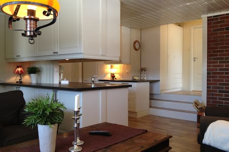 Appartement i Ski/Hiking Resort - Apartment