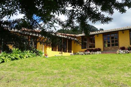 Casa Campestre/Bungalow - Bungalow