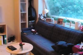 Picture of Bed sofa + guest bed!