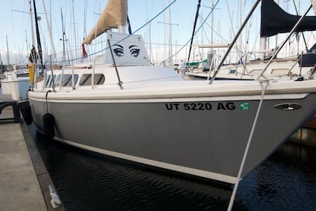 The S.V. Grasshopper is a super clean, recently restored, perfectly simple Catalina 27.  She is docked a short drive from Downtown Seattle, in the charming neighborhood of Ballard, Wa. featuring nearby beach, incredible sunsets, peace, and quiet.
