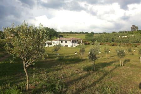 da Carlo e Giulia - Trevignano Romano - Villa