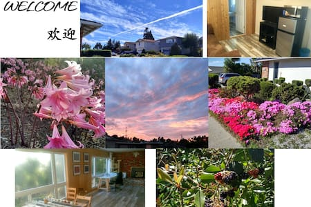 Whole floor rent. - Millbrae - Haus