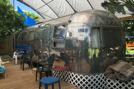 Vintage Airstream near Everglades - Homestead - Camper/Roulotte