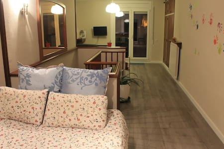 Pis amb vistes ben comunicat, a Vic - Vic - Apartment