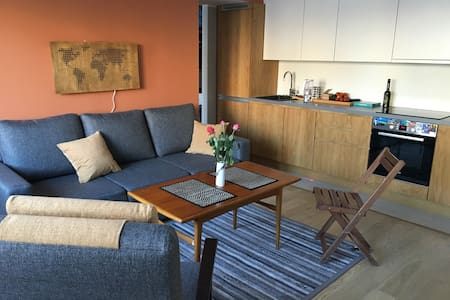 Beautiful flat close to the airport - Tallinn