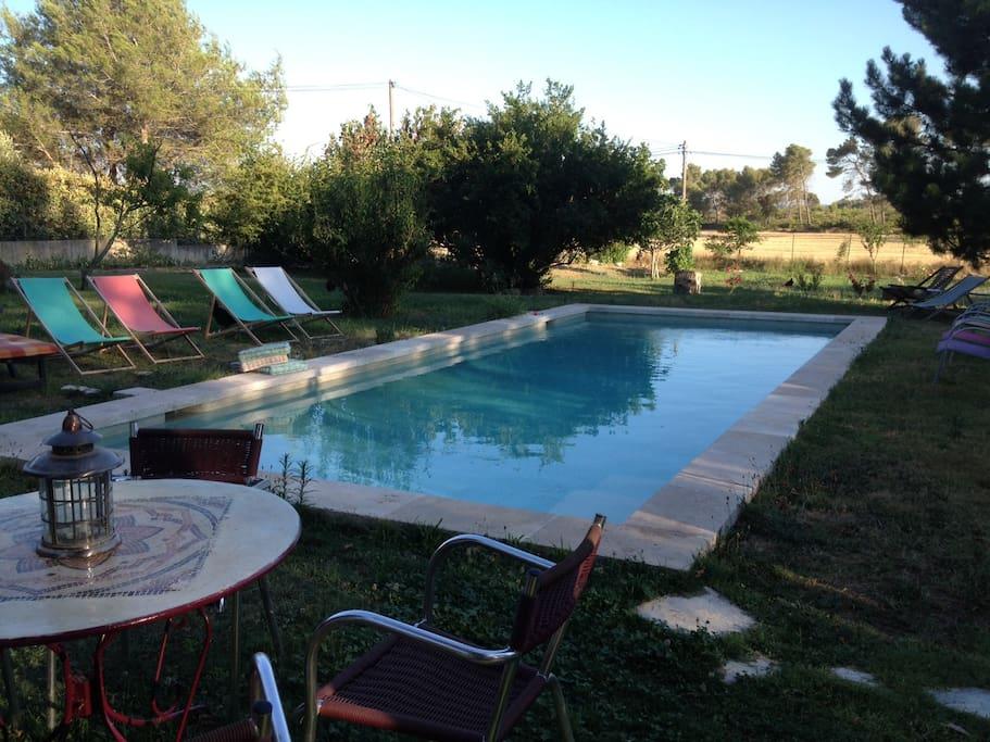 La piscine espace commun