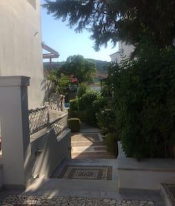 Charming villa with swimming pool - Spetses - Rumah