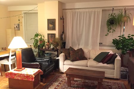 Huge lovely 2BR near Prospect Park - Apartment
