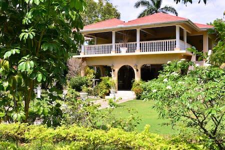 Lovely Spot Villa - Oracabessa - Villa