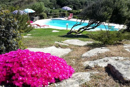La Chintana, villa con piscina - Sassari - Rekkehus