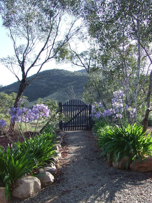 Backyard with gate to the Devil's Peak walk