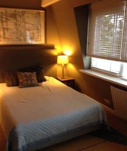 spacious, sunny  room with badroom - Amstelveen - House
