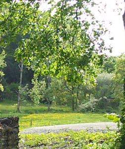 Au coeur du village, au calme absolu - Rochefort-en-Terre - Bed & Breakfast