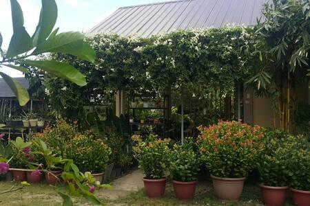 Cozy Tropical Garden Home - Tagum City - Villa