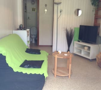 appartement 1 - Betpouey