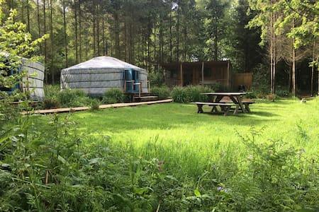 Barefoot yurts - Yurt
