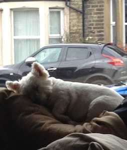 Dog friendly house near Lakes - Lancaster - House