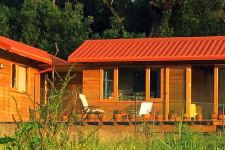 Quiet guesthouse near the forest and the river - Santa Comba Dão