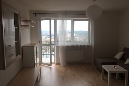 2 bedroom flat with amazing view - L'viv - Apartment