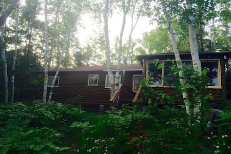 Lakeside Log Cottage with Boathouse - Gooderham - Cabin