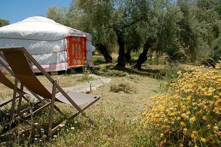 Yurt de Luxe - Rundzelt