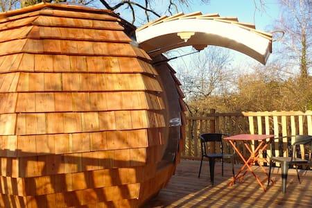 Cabane Écureuil - Ağaç Ev