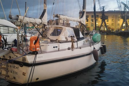 Sailing boat in the Porto Antico near the Acquario - Genova - Boat