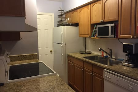 1 bedroom condo with converta-couch - West Springfield