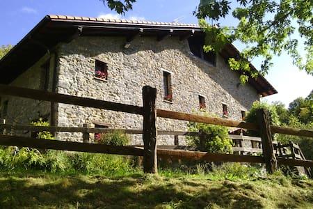 Caserío  Siglo XVI en entorno rural - Errezil
