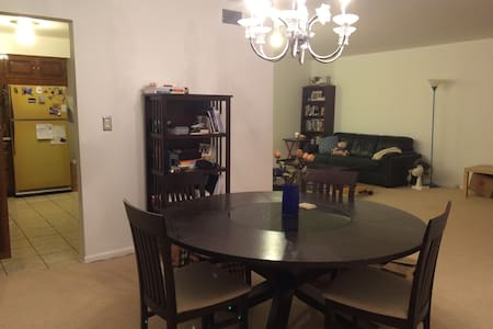 Private Condo near Northwestern University - Evanston - 公寓