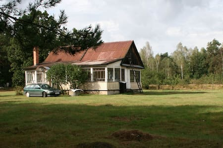 «Арт-берлога» в сосновом лесу - Ház