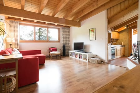 Colina Apt 403: Ski In/Ski Out Easy - Leysin - Appartement