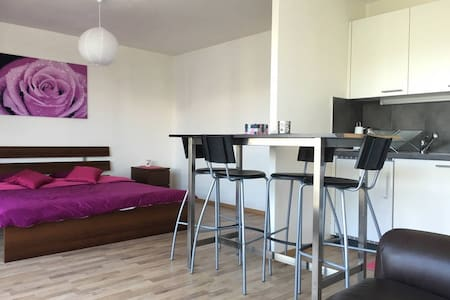 10min EPFL & Train-station,Studio,balcon & parking - Renens
