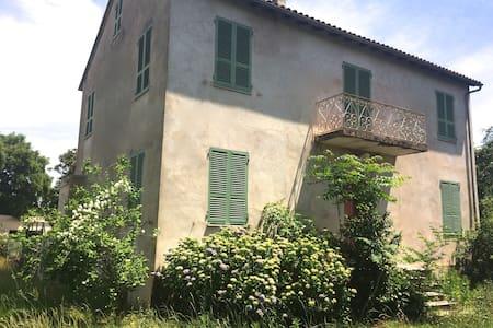 Jolie maison familiale et confortable - Ghisonaccia