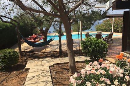 A unique villa by the sea - Pomos-Paphos District