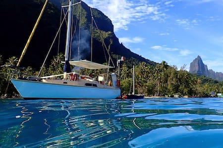 Voilier Moorea , Mouillage Opunohu - Båd