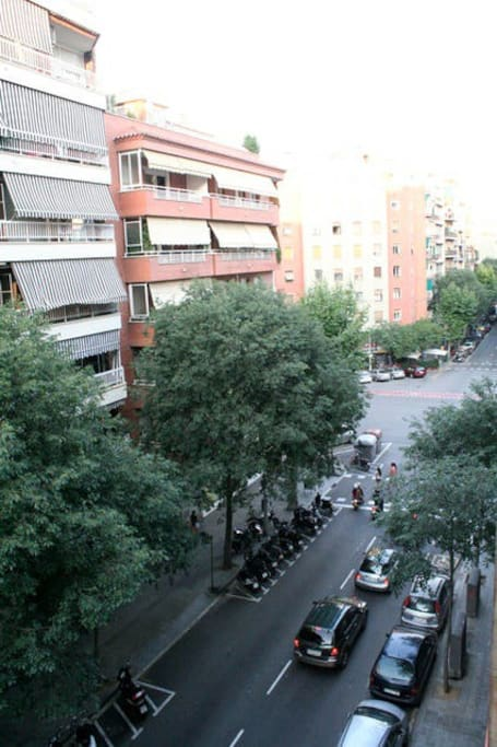 Calle Rocafort street view
