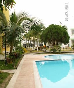 The Palms - Tonsupa