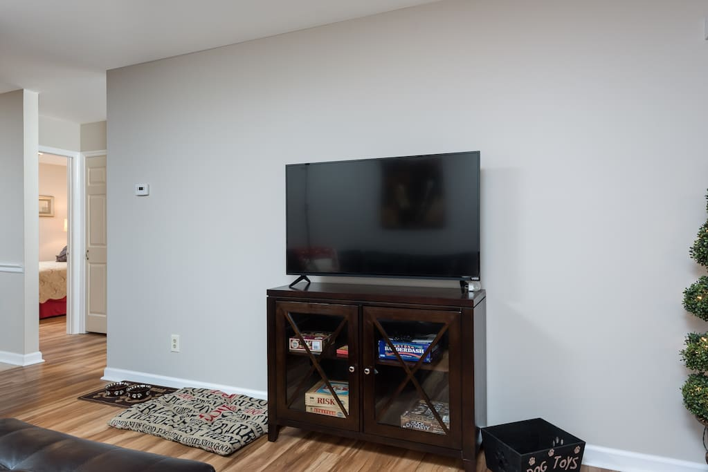 Large flat panel smart TV.  We also have board games and puzzles available as well as some toys for dogs.