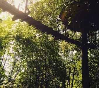 La cabane haut perché - Treehouse