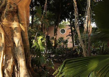 """""""La Armonia¨ Villa Tho - Uayma - Haus"""