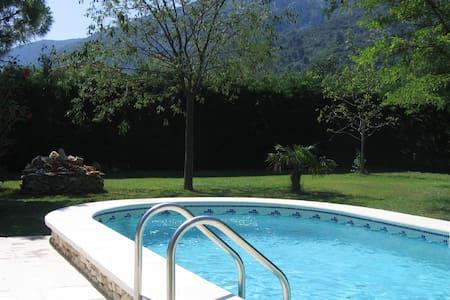 La Ceiba, au pied du Lubéron, un écrin de verdure - Maubec - House