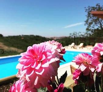 Beautiful Villa with Private Pool - Torino di Sangro - Bed & Breakfast