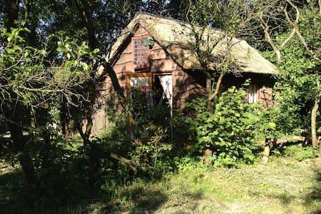 Heksenhuisje midden in het bos - Uffelte - Sommerhus/hytte