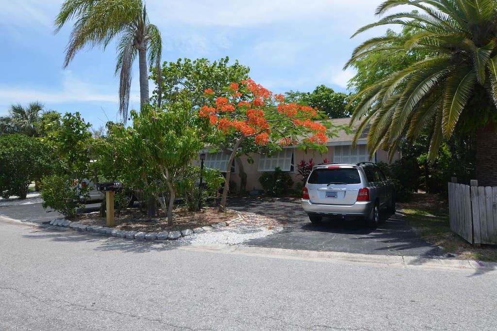 Tropical and shaded property