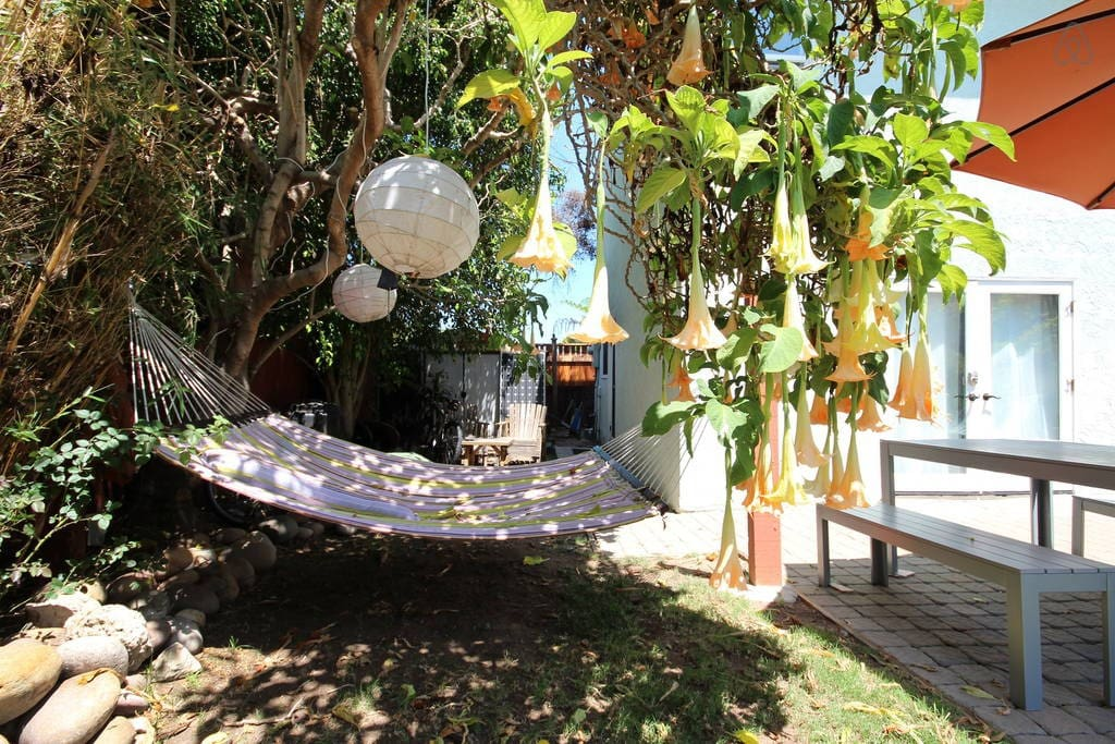 relax in the 2-person hammock in the dappled shade of the fragrant trumpet tree