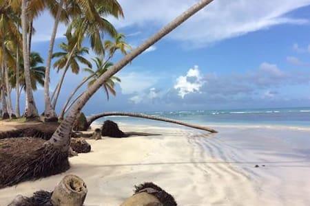 Calme et volupté à 300m de la plage - Las Terrenas - House